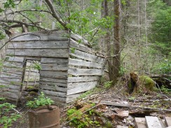 Actually an old wood camp, not a goldrush building