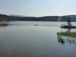 Bare Loon Lake. Great for swimming!